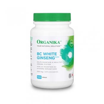 Ginseng Alb de BC – 500 mg – 100 capsule