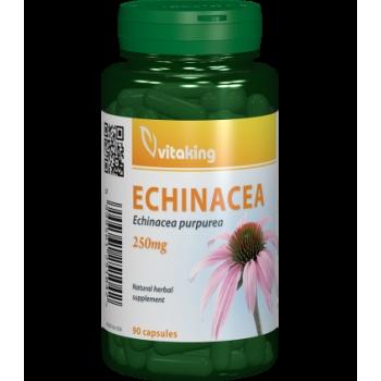 Extract de Echinacea 250 mg - 90 capsule