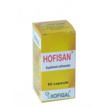 HOFISAN 500MG 60cps HOFIGAL