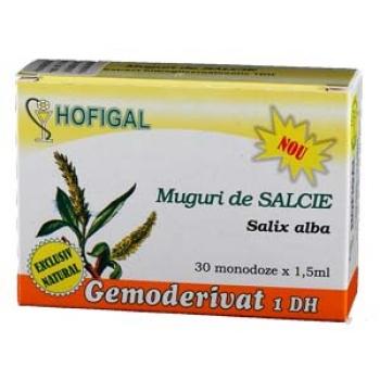 Gemoderivat din Muguri de salcie - 30 monodoze