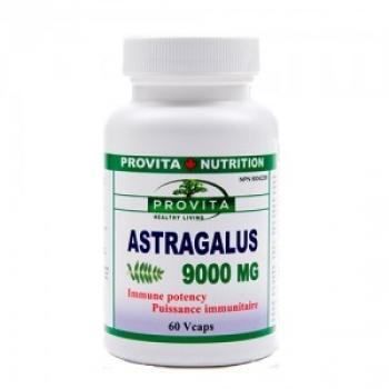 ASTRAGALUS 9000 Mg Forte - 60 caps