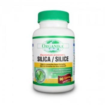 SILICA extract standardizat bio-disponibil - 500 mg - 90 capsule / Organika