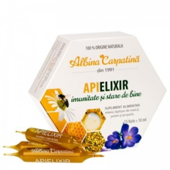 APIELIXIR FIOLE 15*10ML/Apicola