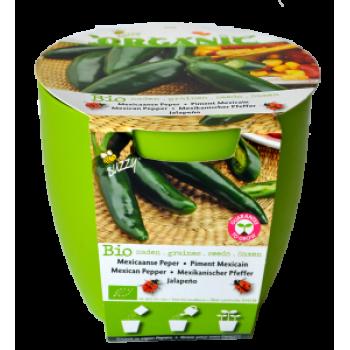Kit Cultivare Ardei Mexican Jalapeno Ecologic/Bio