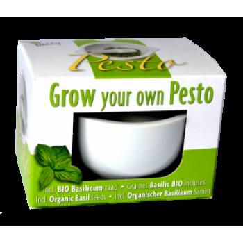 """Kit de Cultivare """"Propriul tau Pesto"""" Ecologic/BIO Buzzy Seeds"""