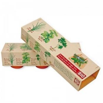 Kit de Cultivare 3 Plante Ierburi Aromate siChives, Busuioc si Patrunjel Ecologic/BIO Buzzy Seeds