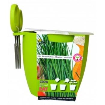 """Kit de Cultivat """"Grow,Cut&Eat"""" Chives + Foarfeca - VERDE"""