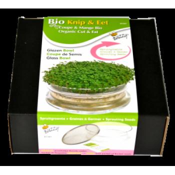 Kit de Germinare Cut&Eat Bol de sticla + Seminte Rucola CADOU Buzzy Seeds