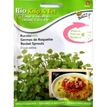 Seminte de Rucola pentru Germinat Ecologic/BIO